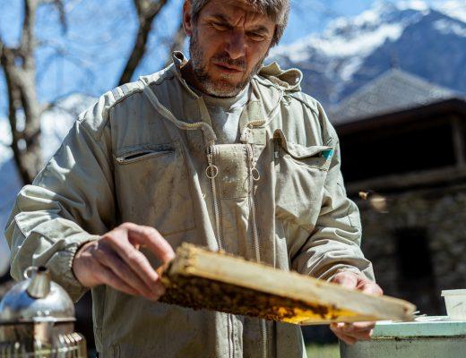 Sébastien Fiastre dans le village de Saint-Alban dans les Alpes qui observe un cadre de ruche.